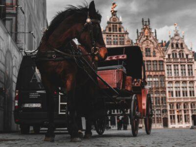 Koets in Antwerpen