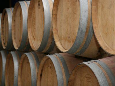 Wijnen in Bordeaux